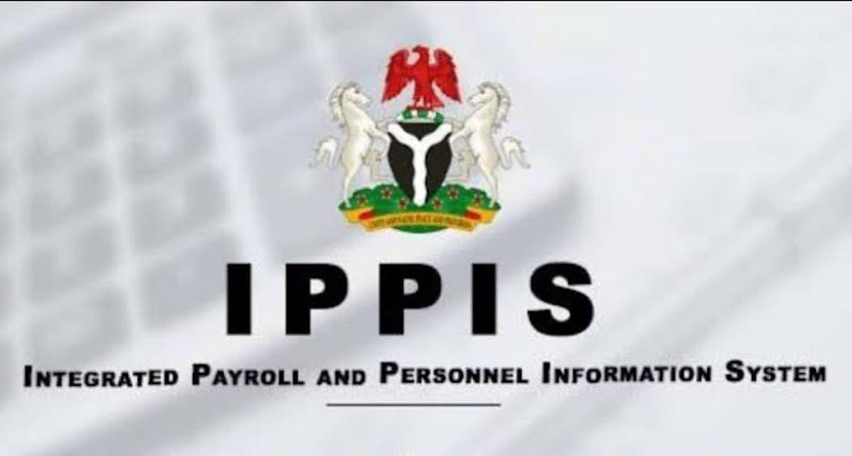 ippis number